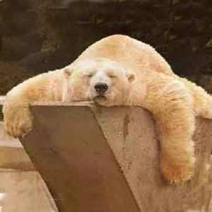 Relaxamento e enxaqueca - Relaxar é preciso